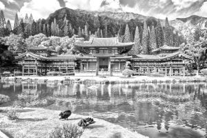 Byodo-In Temple (4622hdrmc) by flatowlphoto