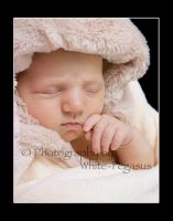 Baby E s1 Newborn Session by NicoleSlaughter