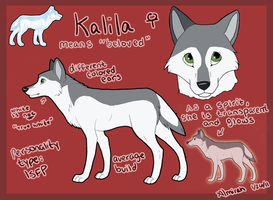 Kalila Official Reference by Almirah