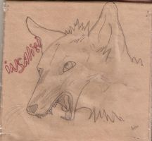 Mad wolf by NastyaHelsa