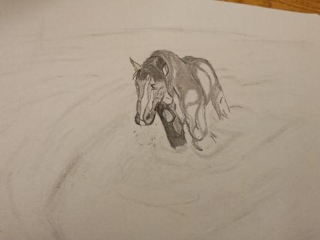 horse in a river by IamLoveisWar