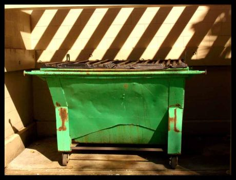 Dumpster. by alyso