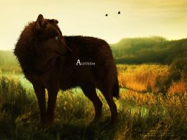 Spring Evening by Aspasia-Project