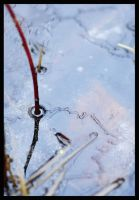 february ice by FMpicturs