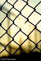 The Fence 2 by Otori1993