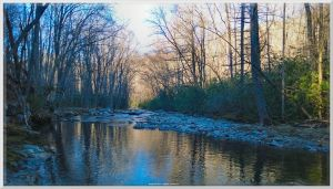 Swimming Hole on Little River Trail 1 by slowdog294