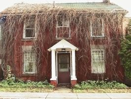 House Covered in Dead Vines by SweetSoulSister