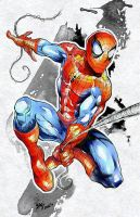 Spiderman by x-SAgi-x