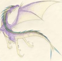 Purple Dragon by Aumiesque