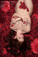 American Beauty Pin-up by ErinRiddle