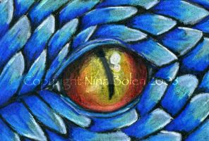 Blue Dragon Eye ACEO by The-GoblinQueen