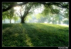 First light... by phantasia55