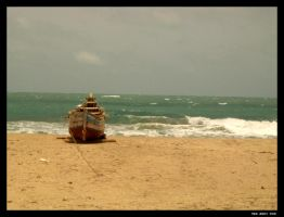 :India: On the beach again ... by nebpixel