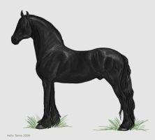 Friesian Stallion by coloredred