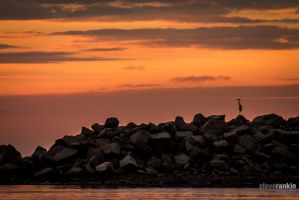 Herron Sunset by steverankin