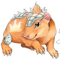 Guinea Pig again by Reisfuchs