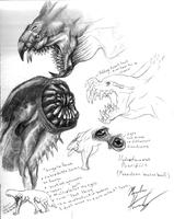 monster concepts by elytracephalid