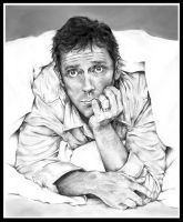 Simply Hugh Laurie by Sterin