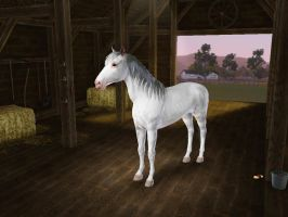 The Sims3 Pets Creations The Lone Rangers Silver by Senwolf10