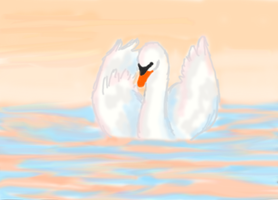 Swan by Uskall