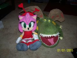 Amy and Dragon by Snivy94