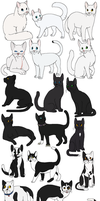60 Cats by Miiroku