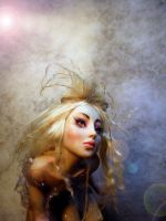 Touch of Magic Fairy Face A by cdlitestudio