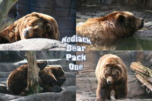 Kodiack Bear Pack - 1 by Seductive-Stock