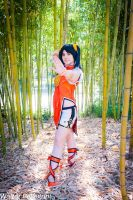 Bamboo wall by Giuly-Chan