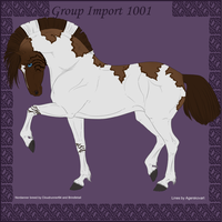 1001 Group Horse Import by Cloudrunner64