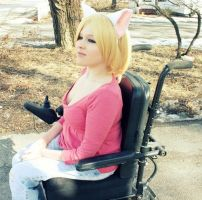 Wheelchair Cat by Misa-on-Wheels
