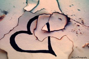 Broken Heart by AliCat2011