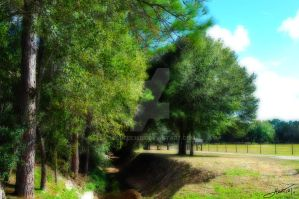 Quiet Countryside by Michele720