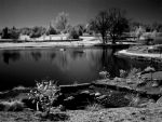 Infrared Lakescape by mesa