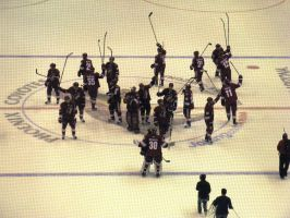 Coyotes salute the fans by BigMac1212