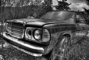 Mercedes IV by Logicalx