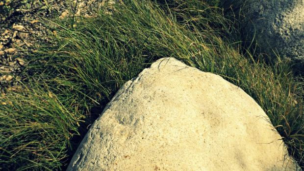 Just a rock, WITH A GRASSY HAIRSTYLE by HighwayAmericano