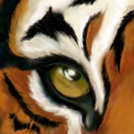 Eye of the Tiger by Niahawk