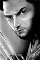 Wolverine by nomdeplume23