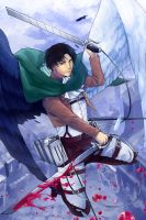 Levi by Neverominin