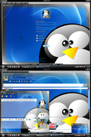 MSN 8.5 Linux by AndyClaro