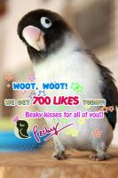 700 LIKES on Facebook by emmil