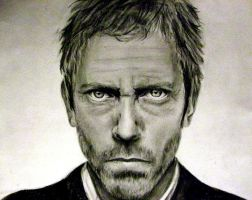 Hugh Laurie by Lizzie-T
