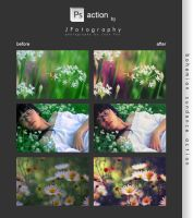 Photoshop Action - Bohemian Sundance by JeanFan