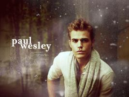 Paul Wesley by me969
