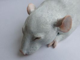 Sleeping Dumbo Rat Sculpture Face by philosophyfox