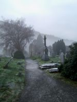 Wicklow Graveyard 04 by RGDart