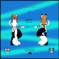 Custom Ref Sheet - halowolf22 by Feralx1
