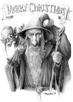 Gandalf the red by Loopydave