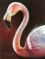 """Flamingo"" - Realism by robybaer"